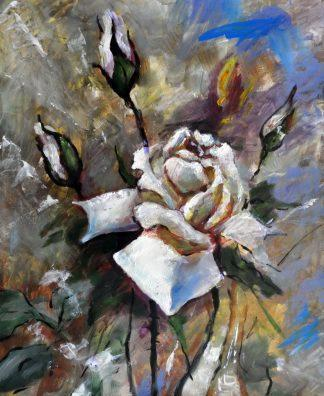 «Белая роза» картина 50х60 арт.5Ц161