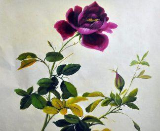 «Роза» картина  50х60 арт.5Ц184