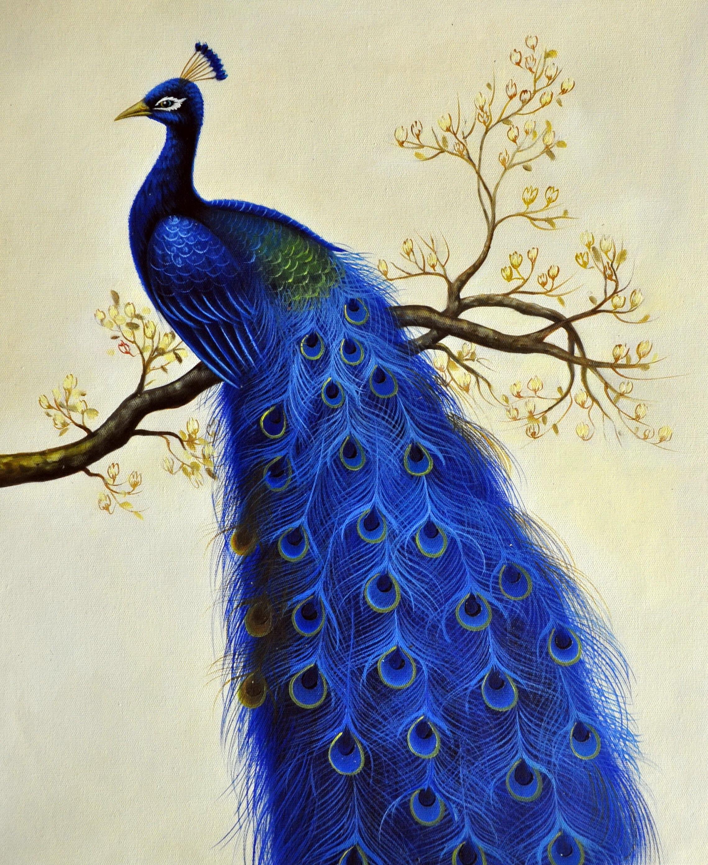 «Павлин» картина  50х60 арт.5А061