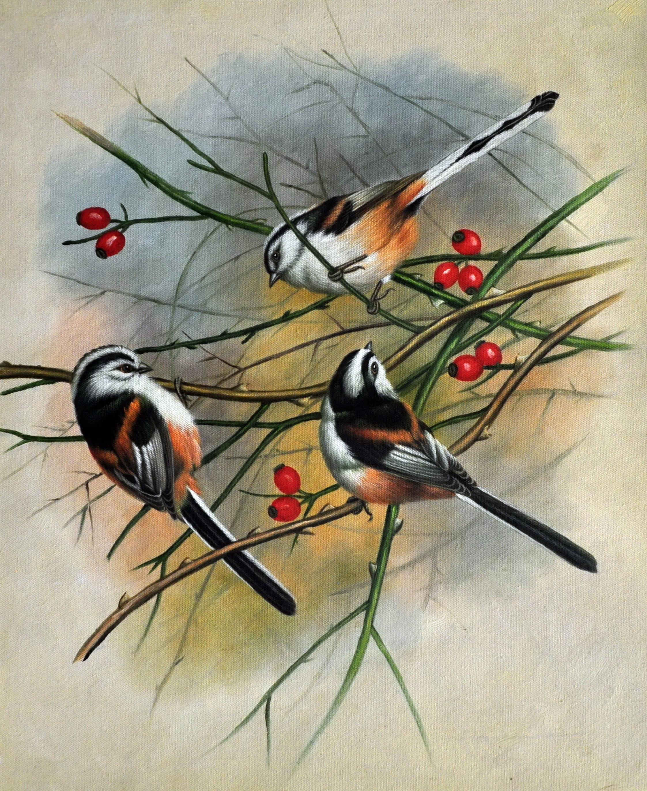 «Птицы на ветке» картина  50х60 арт.5А063