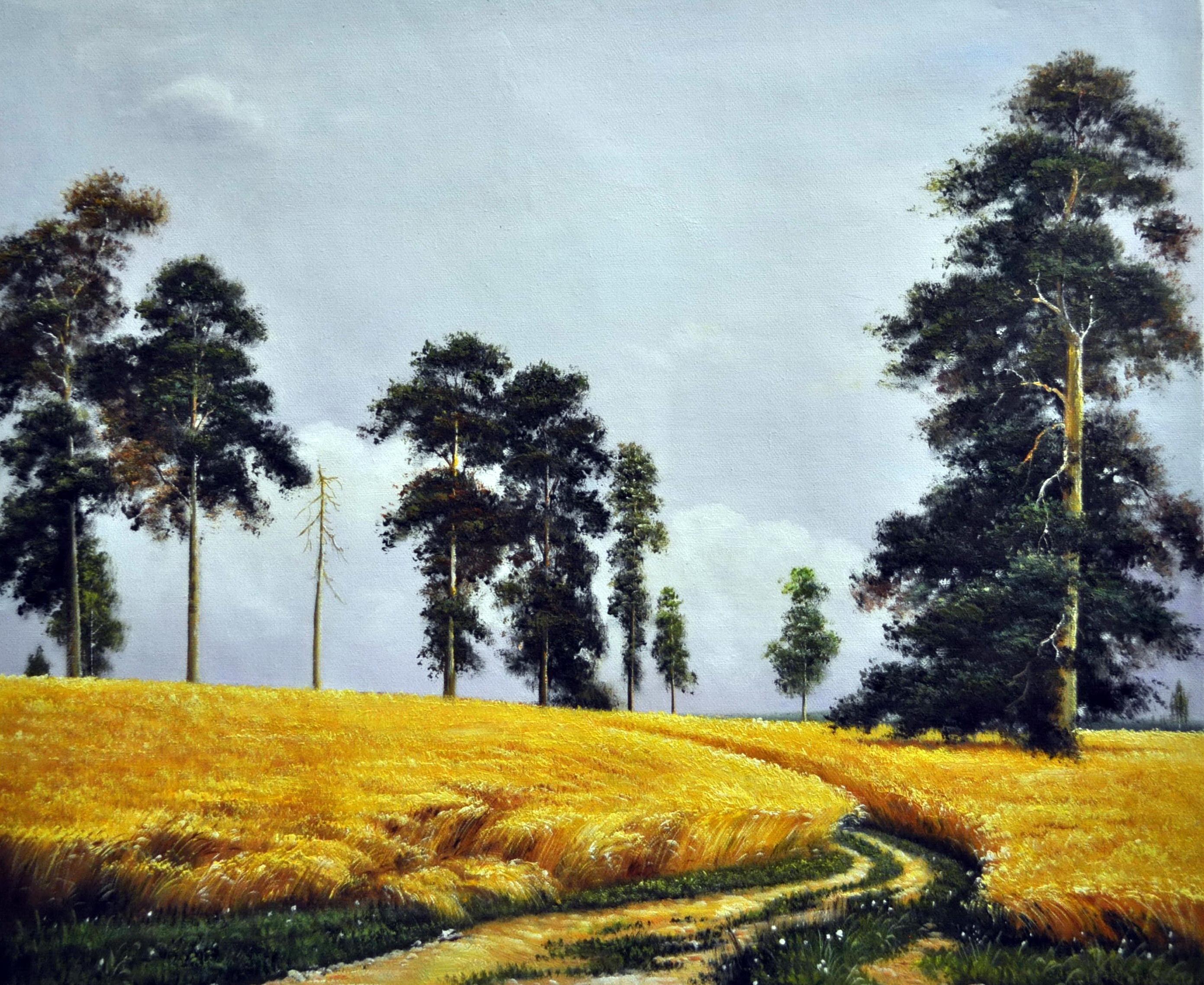 «Рожь» картина  50х60 арт.5П113