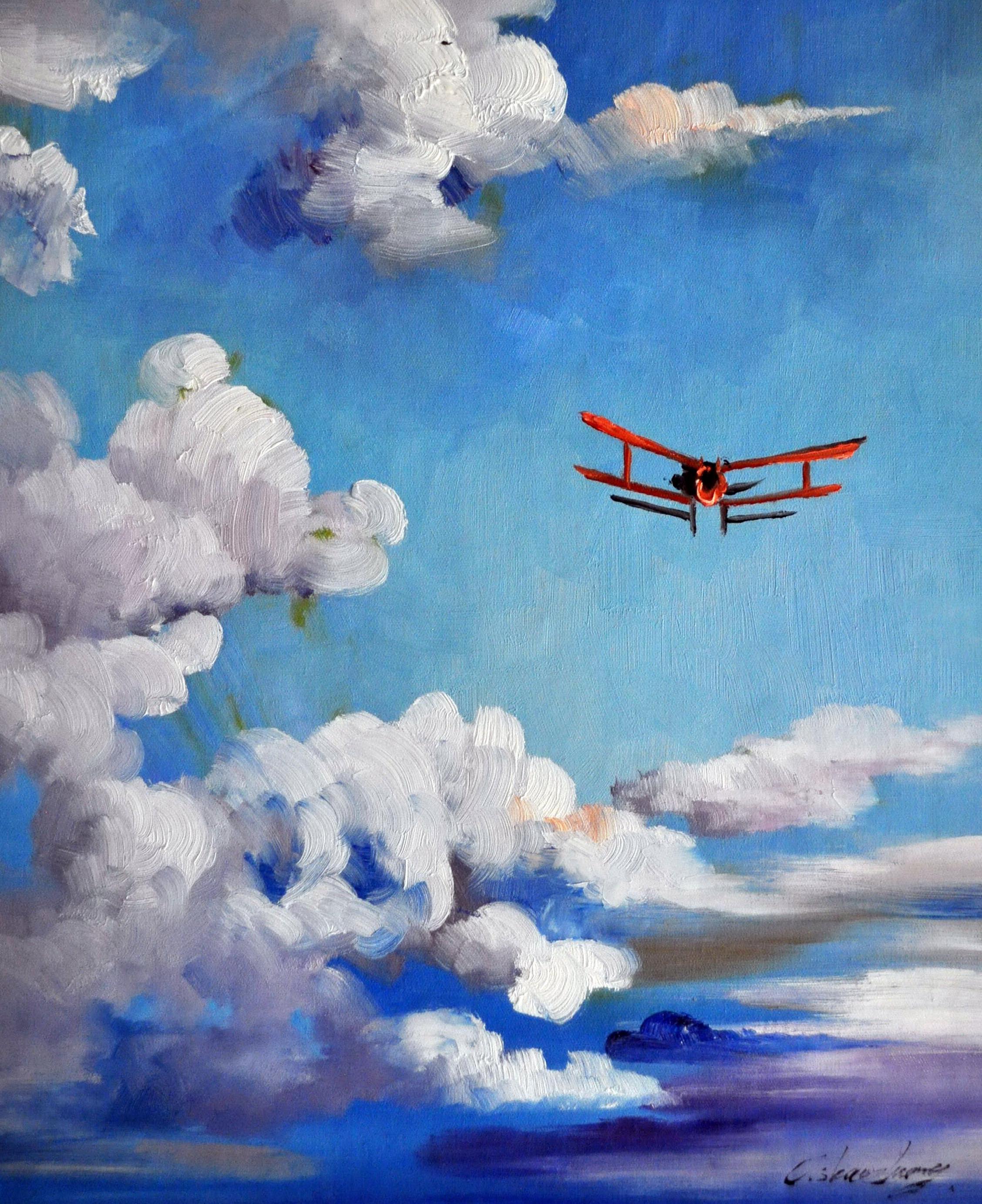 «Полёт» картина  50х60 арт.5Р085