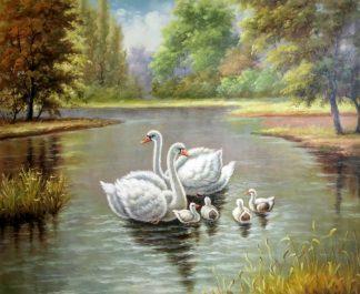 «Лебединая семья» картина 50х60 арт.5а110