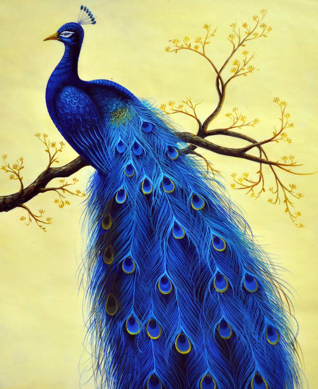 «Павлин» картина 50х60 5а120