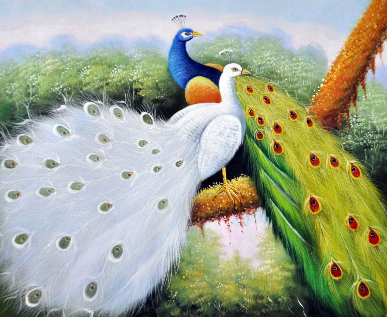 «Пара павлинов» картина 50х60 5а124